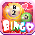 Bingo Fever-Valentine's Day Icon