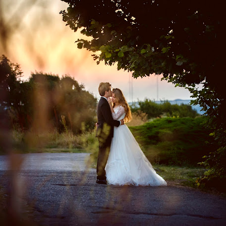 Wedding photographer Adina Si dani (adinadani). Photo of 09.02.2017