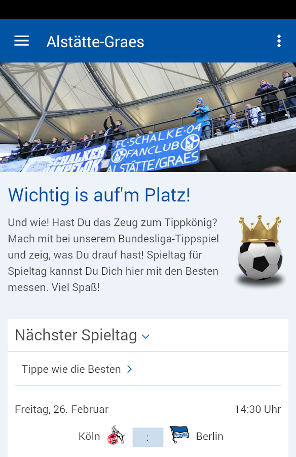 S04-Fanclub Alstätte-Graes- screenshot