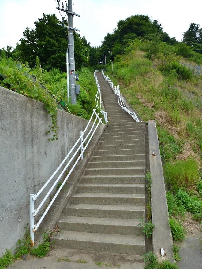 志津川中学校 227段の大階段