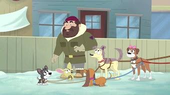 Das große Schlittenhund-Rennen
