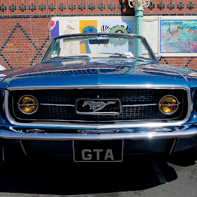 Mustang by Peter Greenhalgh - Transportation Automobiles ( car, mustang, sportscar, ford mustang, ace cafe )