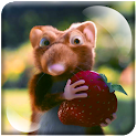 Mouse Coward Strawberries LWP icon