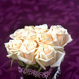 Roses by Steven De Siow - Flowers Flower Arangements ( flower photography, floral photography, flower arrangement, roses, flower,  )