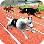 Dog Race Crazy Wild Simulator