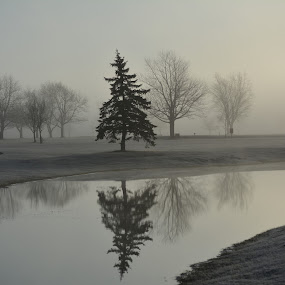 A misty spring morning by Thomas Fitzrandolph - Landscapes Waterscapes ( fog, niagara county ny, nikon d5200, morning, spring, lockport ny, mist,  )