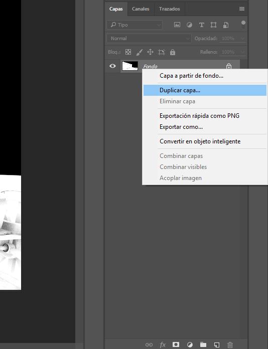 Duplicar capa.jpg