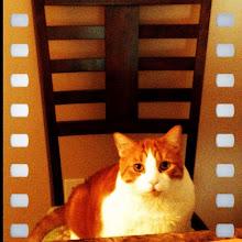 Photo: Waiting for dinner? #gplus - via Instagram, http://instagr.am/p/JvAFPgJfto/