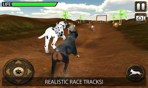 グレイハウンド犬レーシング3D