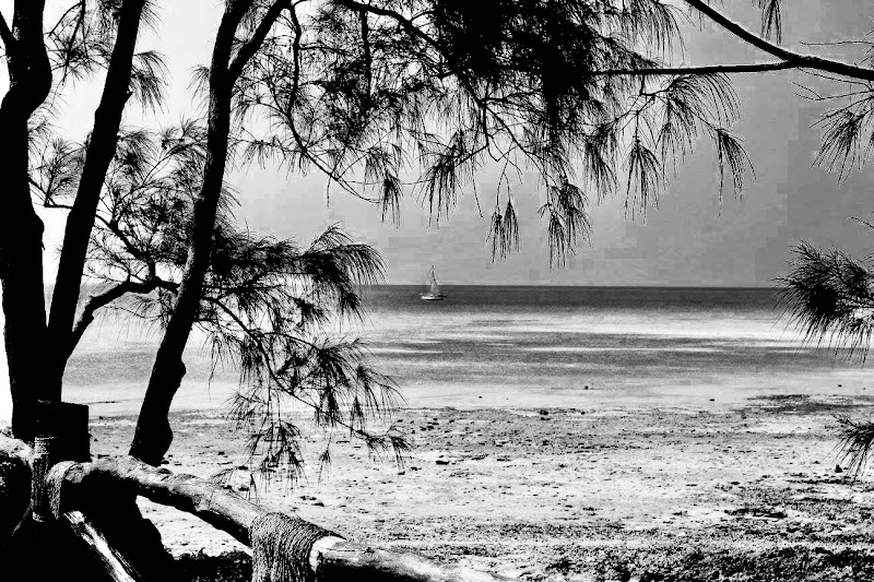 Zanzibar in bianco e nero di Little_S