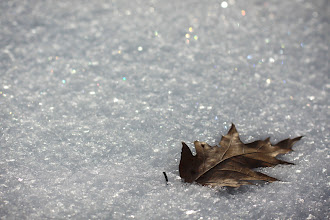 Photo: cold