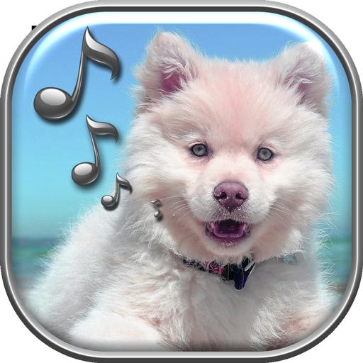 Funny Dog Barking Sounds Download