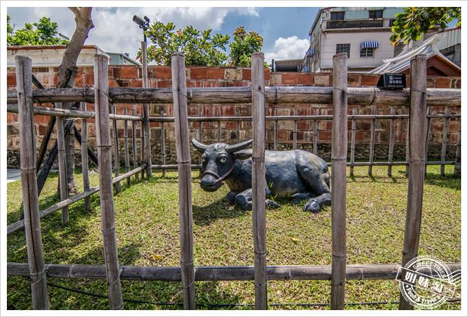 鳳儀書院有牛