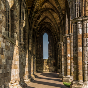 whitby abbey3 by Octavian Oprea - Buildings & Architecture Architectural Detail ( uk, arhitecture, gothic, monument, whitby, abbey )