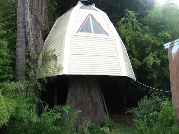 Habitats alternatifs, cabanes et huttes - Page 2 DSCF0934