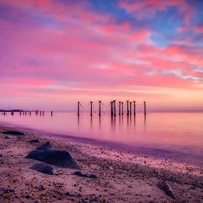 Pink by Brian Lord - Landscapes Sunsets & Sunrises ( sunrise, sunset, delaware, water, landscape )