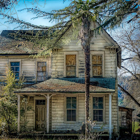 Abandoned Victorian House by Sharon Leckbee - Buildings & Architecture Decaying & Abandoned ( architecture, house, landscape )