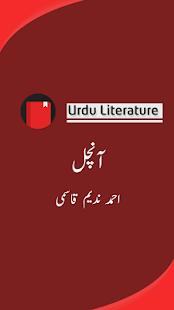 Aanchal(Urdu Novel) - náhled