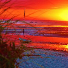Linnell Landing Beach by Kathlene Moore - Landscapes Beaches (  )