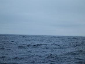 Photo: ・・・雨です。