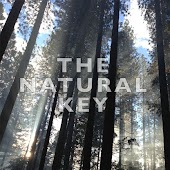 The Natural Key