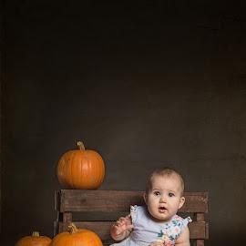 hallowen by Marek Kuzlik - Babies & Children Child Portraits ( hallowen, studio photography, photo of my child, marek kuzlik photography, children photography )