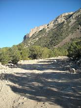 Photo: The road gets pretty rocky climbing up along Bull Mtn.
