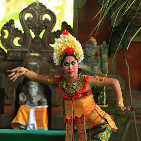 Barong Dancer by Anita Elers-Cooper - People Musicians & Entertainers ( bali, barong )