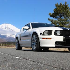 マスタング クーペ  GT Californiaspecialのカスタム事例画像 T さんの2020年02月29日23:38の投稿