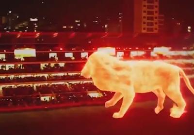 🎥 Fantastische beelden: Argentijnse topclub viert heropening voetbaltempel door 'leeuw' over het veld te laten lopen