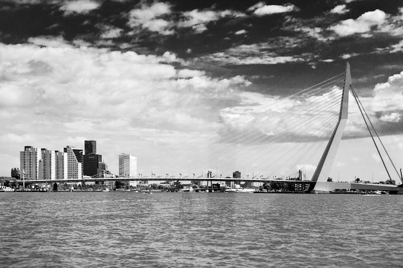 Erasmusbrug - Ponte di Rotterdam di Steven_Hope
