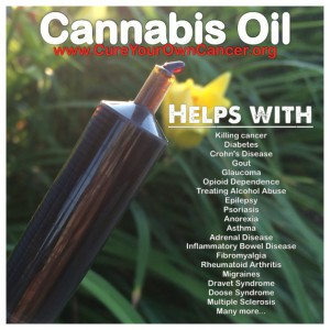 Cannabis News Journal : Allowing Beneficial Use of Medical Cannabis