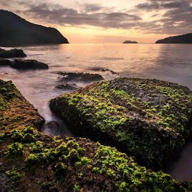 Early Light by Geoffrey Wols - Landscapes Waterscapes ( coast, sunrise, rocks, beach, water,  )
