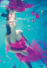 Photo: Last Breath of Summer