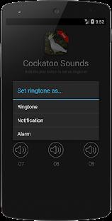 Cockatoo Bird Sounds - náhled