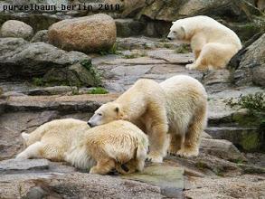 Photo: Die drei Damen warten auch schon ;-)