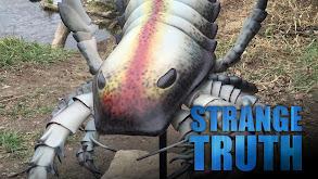 The Strange Truth thumbnail