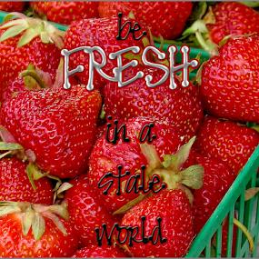 fresh by Lennie L. - Typography Words