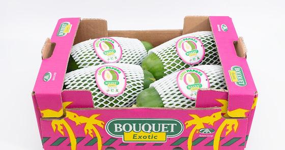 Anecoop impulsa la comercialización de papaya verde
