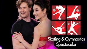 Skating & Gymnastics Spectacular thumbnail