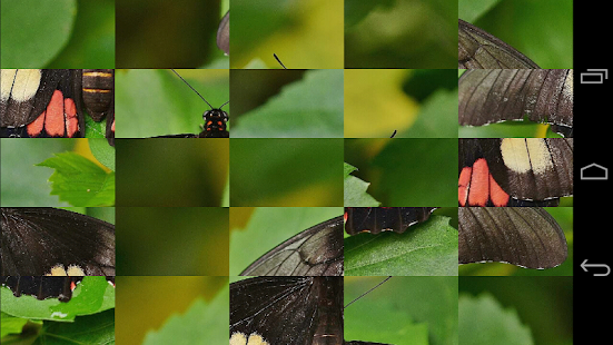 Tile Puzzles · Butterflies- screenshot thumbnail