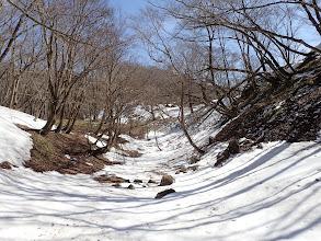 涼しいので雪の上を歩く