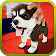 Unleashed Dog icon