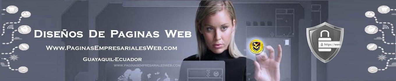 Paginas-Web-Profesionmales-Guayaquil-Quito-Cuenca-Manta-Salinas-Ecuador