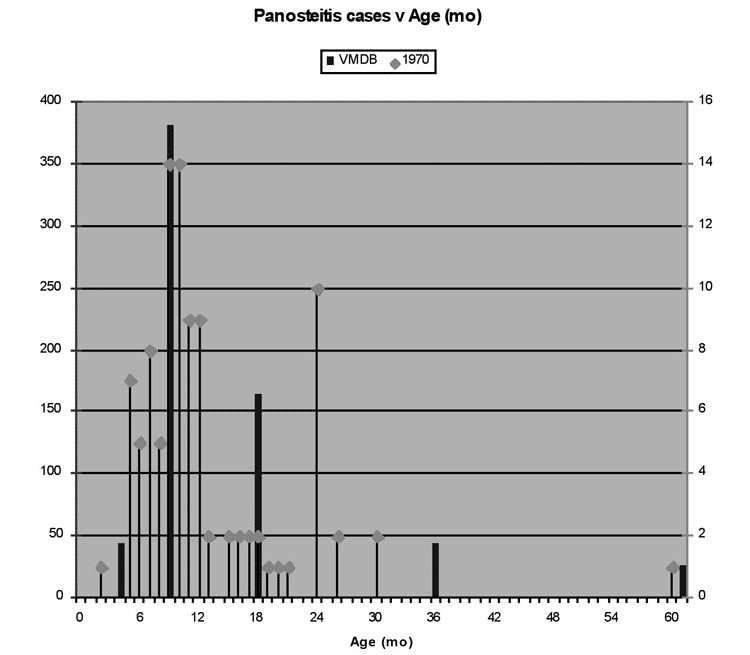 Age distribution of dogs with panosteitis from VMDB (662 dogs) and Bohning et al. report (100 dogs) indicates panosteitis is predominantly a juvenile disease