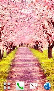 桜路のおすすめ画像3