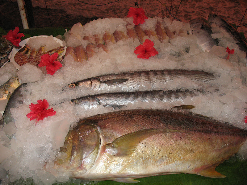 Photo: Butterfish and Barracuda
