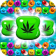 Weed Crush Match 3 Candy - ganja puzzle games