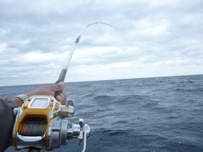 Photo: 船頭さんもガンバッて釣ってますよー!