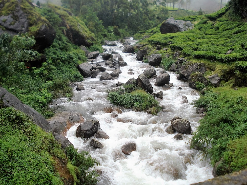 travelogged-21-things-to-do-munnar-attukad-waterfalls_image